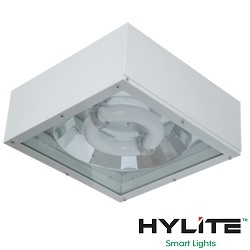 Induction Canopy Lights